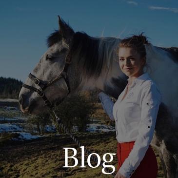 01 blog