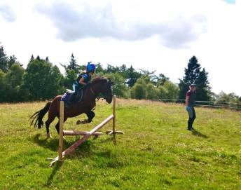 Some shots from a few jumping lessons last week!